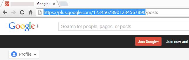 googleplus-profile