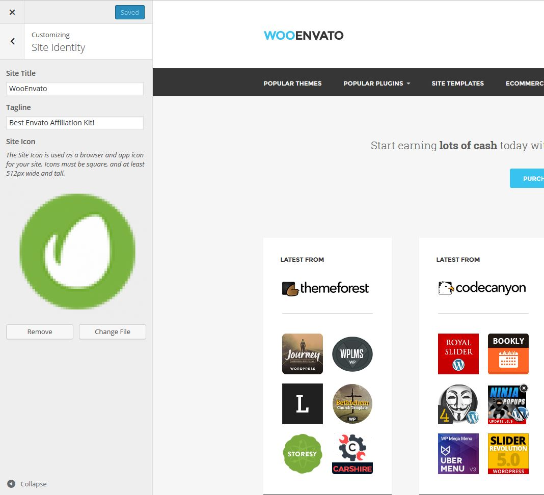 WooEnvato - Customize - Site Identity